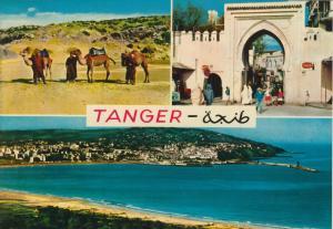 Tanger v. 1979  3 Stadt-Ansichten  (55308)
