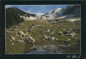 Algerie v. 1982  Premieres neiges - Tala Guilef (55087)