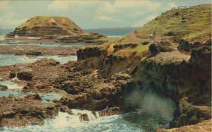 Phillip Island v. 1968  Victoria  (56004)