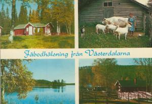 Föbodhälsning frän Västerdalatna v. 1976  4 Ansichten  (55133)
