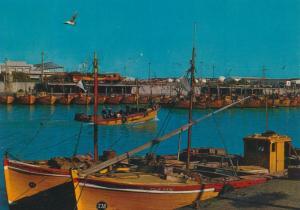 Mar del Plata v. 1976  Hafen  (55172)