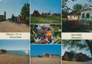 Seewinkel / Zllnitz v. 1966 7 Ansichten  (56590)