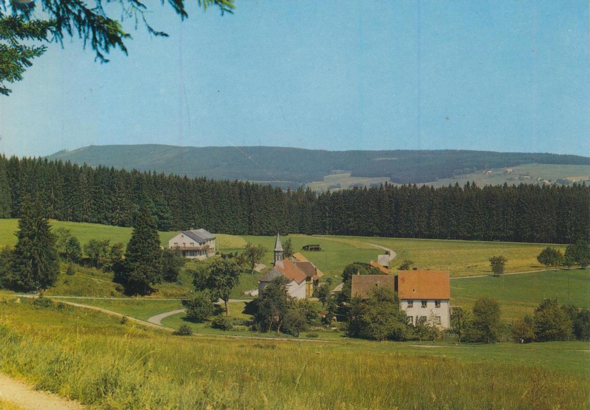 Lenzkirch v. 1968  Gasthaus Grünwald, Bes. Alban Haas (56292) 0