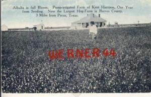 Pecos-Texas v. 1915   (27444)