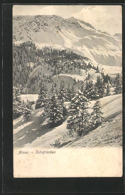AK Arosa, Schafrücken im Winter