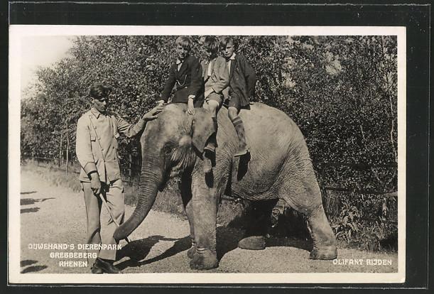 AK Olifant Rijden, drei Jungen reiten auf dem kleinen Elefanten 0