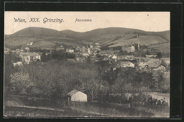AK Wien-Grinzing, Panorama 0