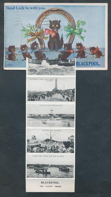 Leporello-AK Blackpool, Hufeisen mit schw. Katzen, Promenade & Tower, Pleasure Beach
