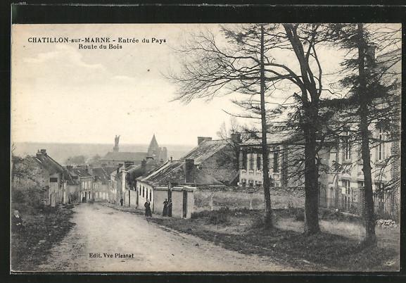 AK Chatillon-sur-Marne, Entrée du Pays, Route du Bois