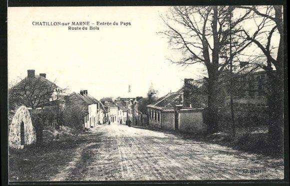 AK Chatillon-sur-Marne, Entree du Pays, Route du Bois