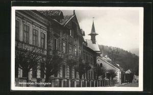 AK Weissenbach, Ansicht vom Triestingheim