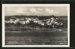 AK Pfaffenschlag, Panorama