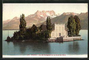AK Clarens, Ile de Saiagnon et la Dent du Midi