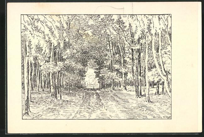 Künstler-AK sign.Walter Cleff: Waldpartie mit Blick zum Ausgang