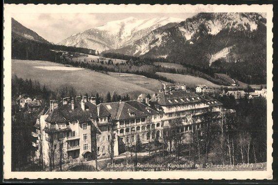 AK Edlach, Kuranstalt mit Schneeberg