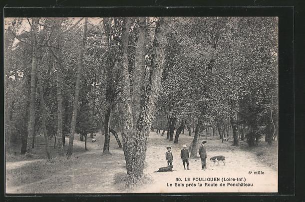 AK Le Pouliguen, le bois près de la route de Penchâteau, des enfants et des chiens sur la route