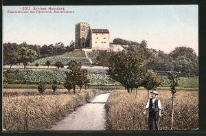 AK Habsburg, Blick auf Schloss