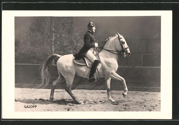 AK Dressurreiten, Galopp, Reiter in Uniform auf seinem Pferd