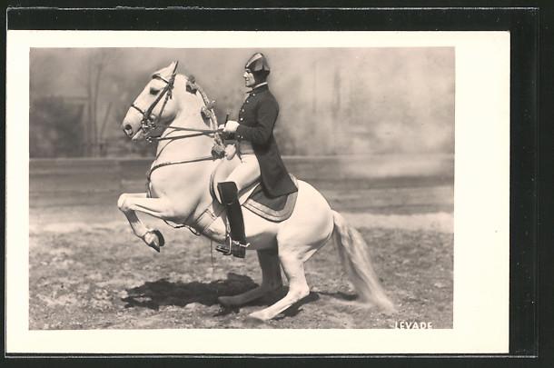 AK Dressurreiten, Levade, Reiter in Uniform auf seinem Pferd beim Steigen