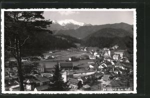 AK St. Aegyd a. Neuwald, Blick auf den Ort