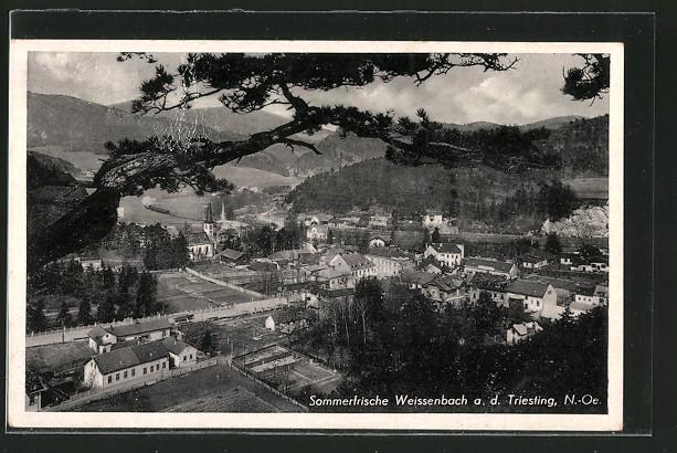 AK Weissenbach a. d. Triesting, Blick auf den Ort