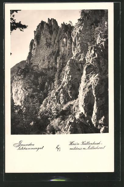 AK Gmunden, Hois'n Kaltenbachwildnis mit Adlerhorst