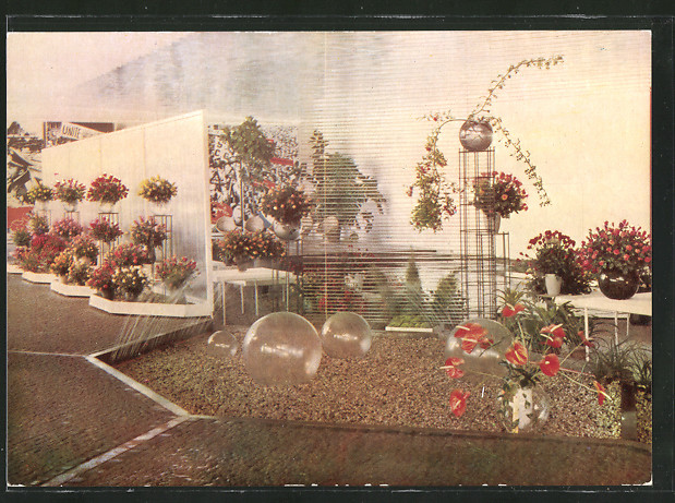 AK Erfurt, 1. Internationale Gartenbau-Ausstellung d. soz. Länder 1961, Rosenschau in der Halle d. Völkerfreundschaft