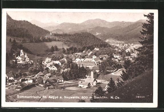 AK St. Aegyd a. Neuwalde, Gesamtansicht vom Berghang aus