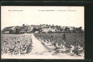 AK Dol-de-Bretagne, Le Mont-Dol, Vue générale