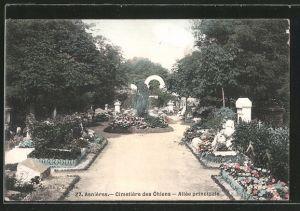 AK Asnières, Cimetiere des Chiens, Hundefriedhof, Allée principale mit Gräbern