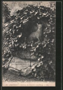 AK Asnières, Interieur du Cimetière des Chiens, Hundefriedhof, aufwendiger Grabstein mit Hund