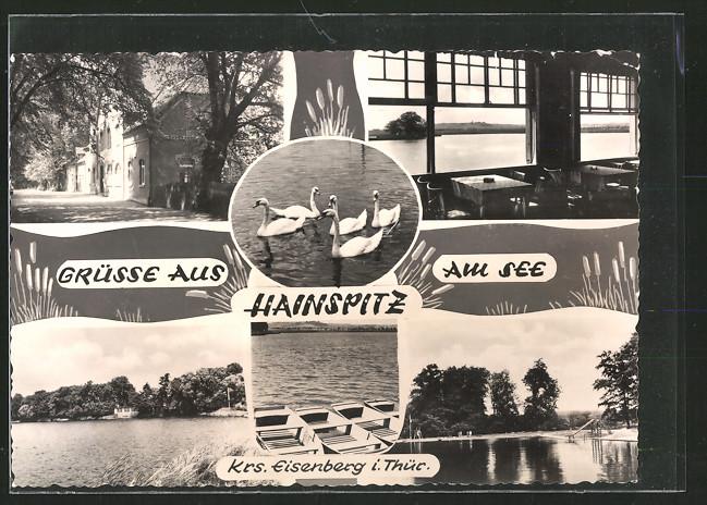 AK Hainspitz, Gasthaus, Ortsansicht, Schwäne auf dem See