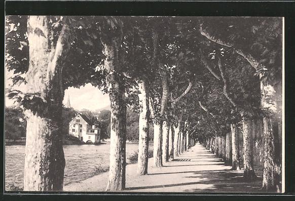 AK Baden, Limmatpromenade