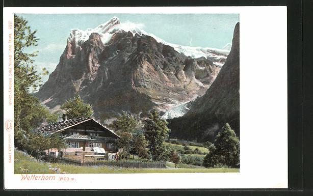 AK Wetterhorn, Hütte vor dem Berg