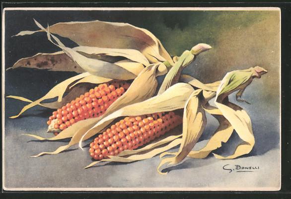 Künstler-AK S.Bonelli: zwei Maiskolben