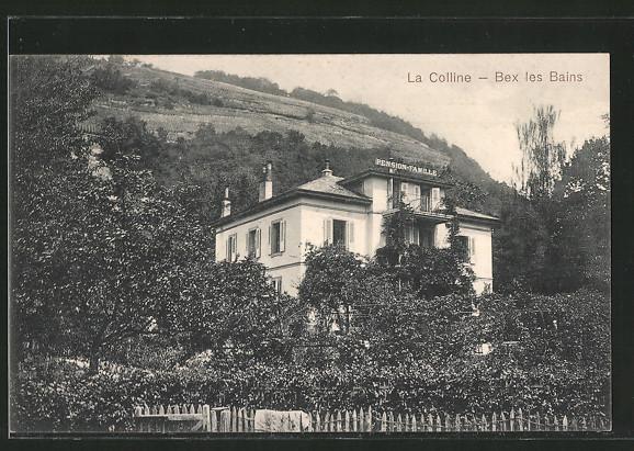 AK Bex les Bains, La Colline