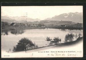 AK Lac de Bret, vue générale avec la dent de Morcles et le Grammont