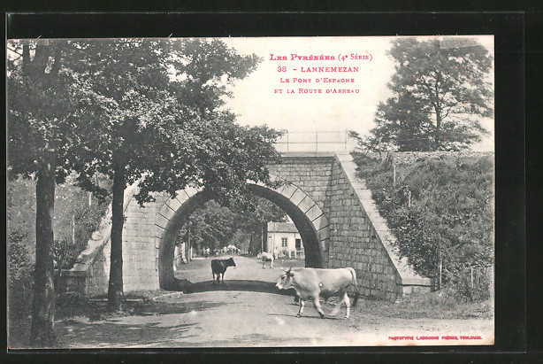 AK Lannemezan, le pont d'Espagne et la route d'Arreau, des vaches sur la route