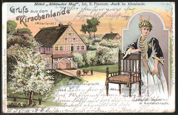 Lithographie Jork, Hotel Altländer Hof, Inh. E. Praesent, Altländer Braut in Nationaltracht, Kühe