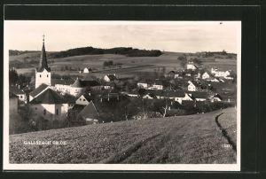 AK Gallspach, Panorama