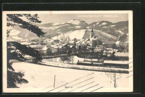 AK Türnitz, Ortsansicht im Winter