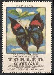 Reklamemarke Tobler Suisiana Lakto Chokolado, Papilioni, Callima Paralecta Schmetterling