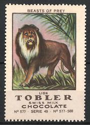 Reklamemarke Tobler Swiss Milk Chocolate, Beasts of Prey, Lion, Löwe