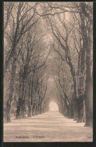 AK Aubonne, l'avenue