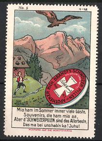 Reklamemarke Künstler-Reklamemarke Johann Peter Werth, Rich. Brandt's schweizer Pillen, Schachtel Abführmittel & Adler