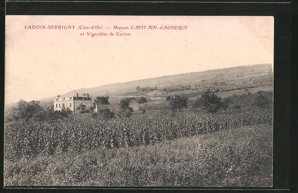 AK Ladoix-Serrigny, Maison Capitain-Gagnerot et vignobles de Corton, Weinanbau