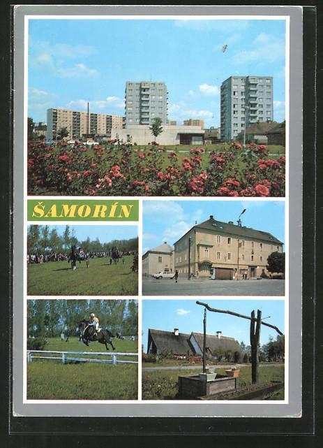 AK Samorin, Hochhäuser, Trabrennen, Brunnen, Ortspartie, Reiter springt über ein Hinderniss