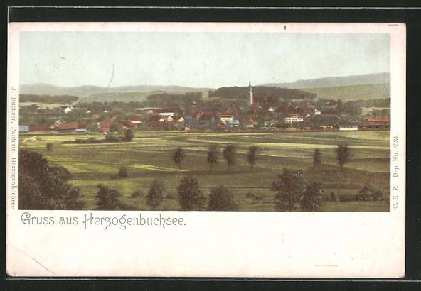 AK Herzogenbuchsee, Panoramaansicht