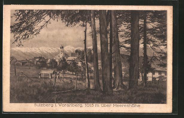 AK Sulzberg, Waldpartie mit Durchblick zum Ort