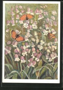 Künstler-AK Jean Zeltner: Gemeines Leimkraut flattert auf der Blumenwiese